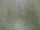 Pardoseli poliuretanice cu nisip colorat EVIDECOR
