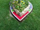 Peisagistica cu pietre colorate EVIDECOR