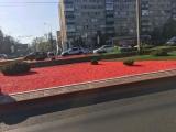 Amenajari strada,scuar,sens giratoriu cu pietre colorate EVIDECOR